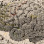 NOJ Selbst-Hypnose nicht nur für Studenten
